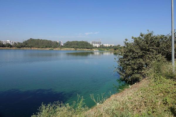 Understanding Wetland Instrumentality and Dead Zone at Jakkur Lake