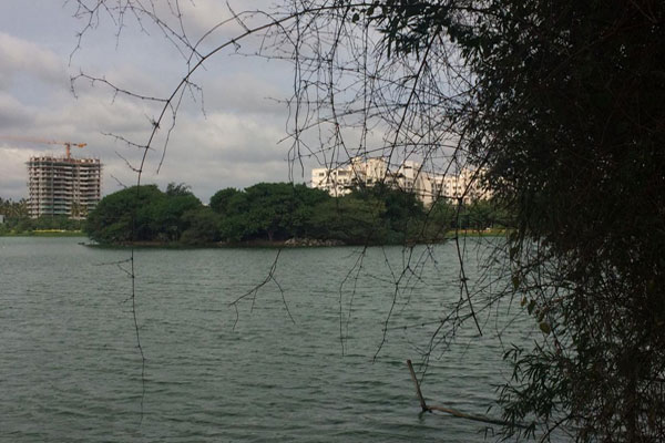 Jakkur Lake -be a Citizen Scientist for Day